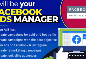 9055I Will Be Your Facebook Ads Expert